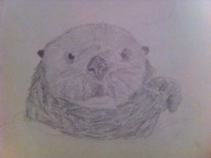 OttersSketch2